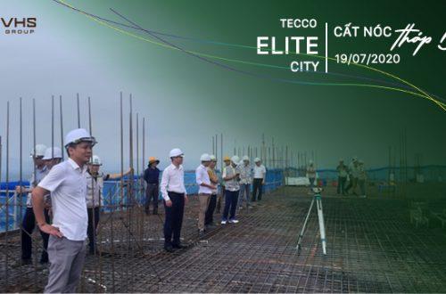 TIẾN ĐỘ DỰ ÁN TECCO ELITE CITY THÁI NGUYÊN T7/2020