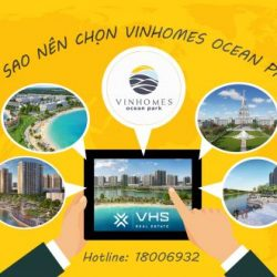 Tại sao nên chọn VinHomes Ocean Park-01